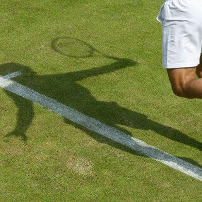 top seed tennis grass
